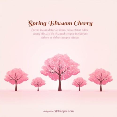 こちらは桜の木